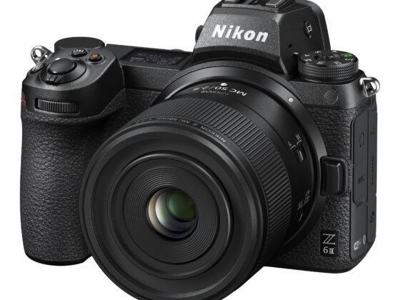 Das Nikkor Z MC 50mm f/2.8 an der Nikon Z6 II