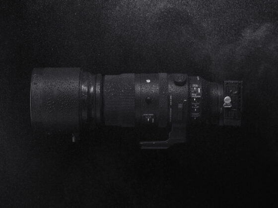 Sigma 150-600mm f/5-6.3 DG DN OS Sports an einer Sigma fp DSLM